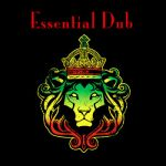 Andy's All Stars- Essential Dub - Double album